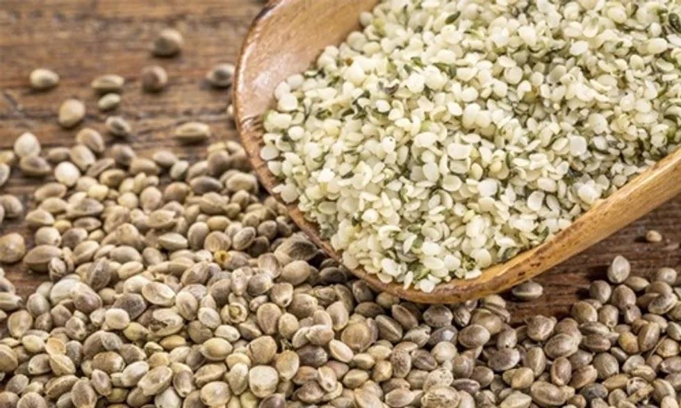 hemp seeds in marathi