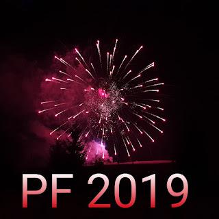Radostný rok 2019!