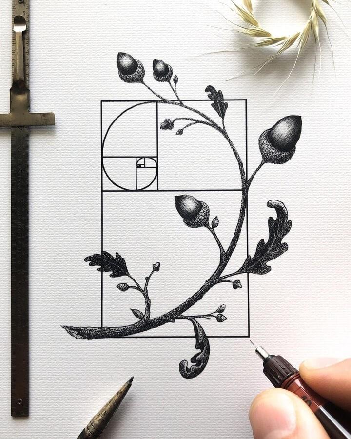 08-The-Fibonacci-sequence-and-nature-Nicholas-Baker-www-designstack-co