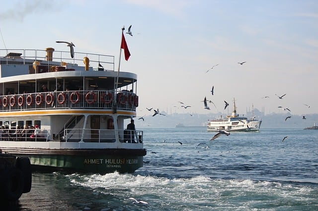 السفن السياحية