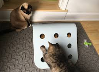 Interactive toys for cat pet