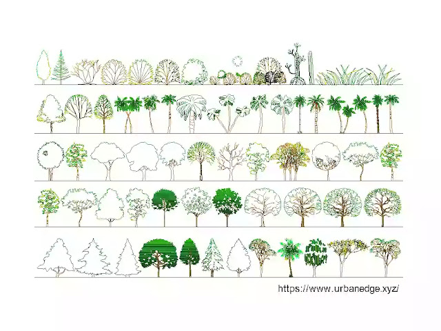 Trees side view, elevation dwg cad blocks download, 65+ Tree elevation dwg blocks