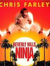 Un Ninja en Bervely Hills (1997)