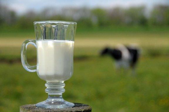 susu yang terbaik untuk ibu mengandung