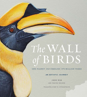 The WALL of BIRDS, Jane Kim, aux éditions Harper design