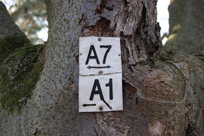 Weiße, an einem Baum befestigte Blechschilder mit den Aufschriften A7 und A1