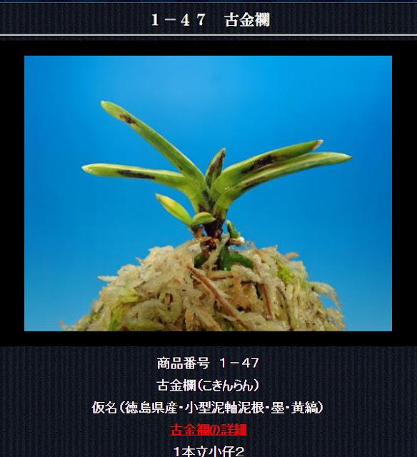 http://www.fuuran.jp/1-47html
