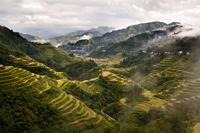 Banaue Rice Terraces, Ifugao