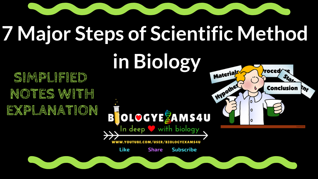 7 Major Steps of  Scientific Method in Biology with explanation