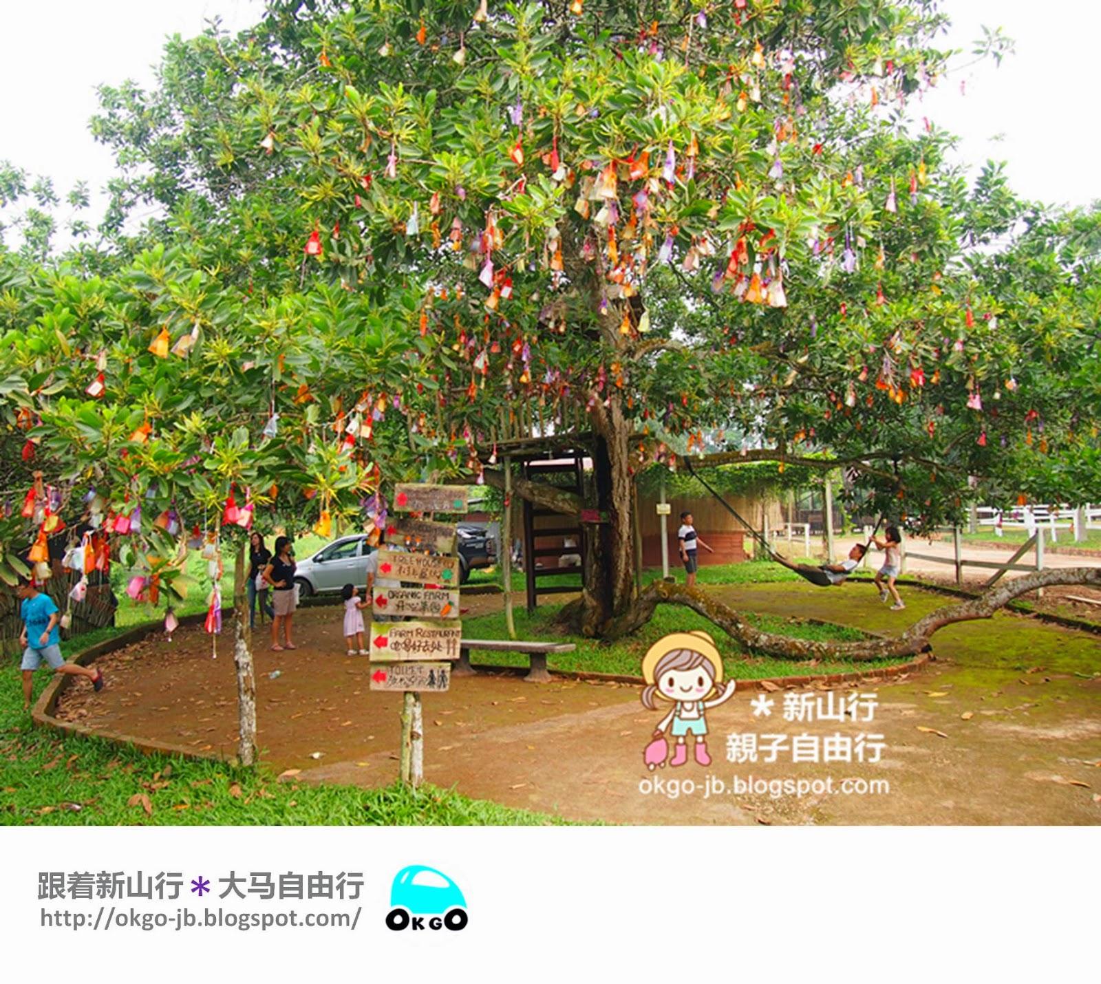Kluang UK Farm wishing tree