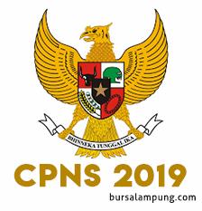 Informasi Penerimaan CPNS Tahun 2019 di Lingkungan Pemerintah Pusat dan Daerah