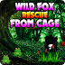 AvmGames - Wild Fox Rescue From Cage