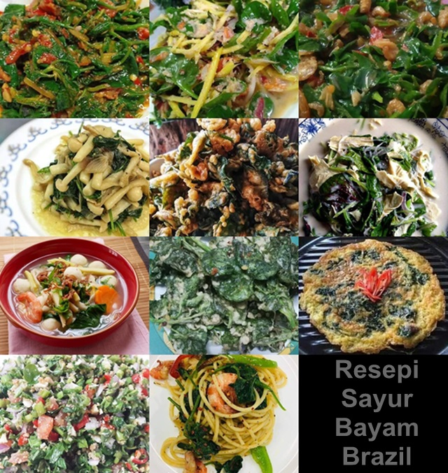 11 Resepi Masakan Sayur Bayam Brazil Yang Lazat Dan Berkhasiat