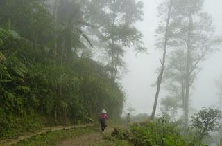 Trekking por Sapa.