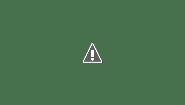 Satu Ekor Harimau Turun Ke Permukiman Warga Kota Tapaktuan