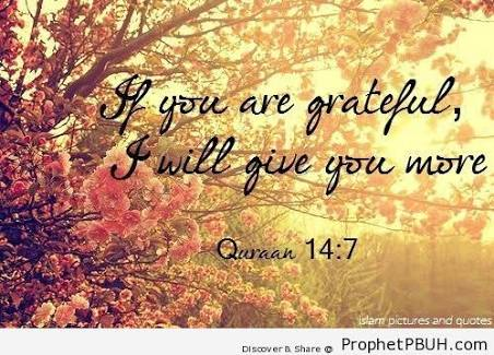 Quran: If you are grateful, I will give you more.