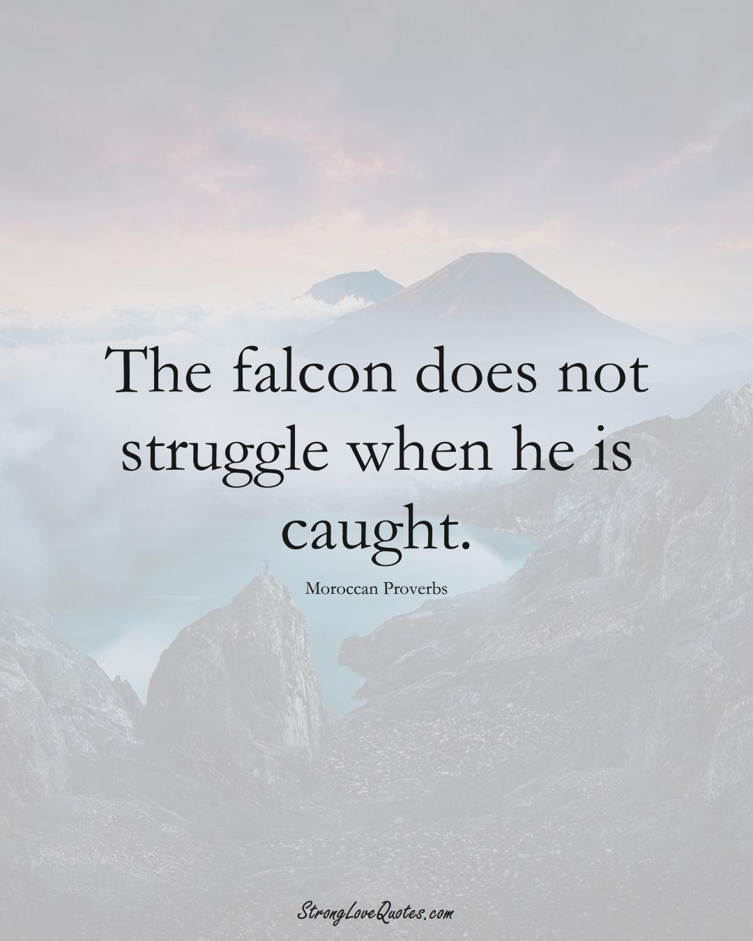 The falcon does not struggle when he is caught. (Moroccan Sayings);  #AfricanSayings