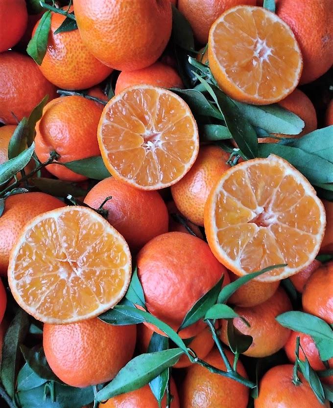 Abril: sus frutas y verduras