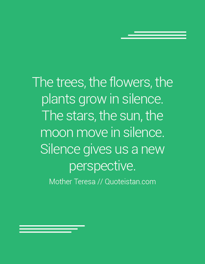 The trees, the flowers, the plants grow in silence. The stars, the sun, the moon move in silence. Silence gives us a new perspective.