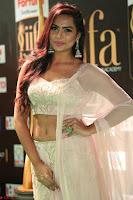 Prajna Actress in backless Cream Choli and transparent saree at IIFA Utsavam Awards 2017 0133.JPG