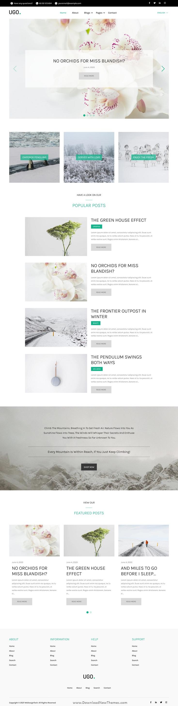 Modern Blog HubSpot Theme