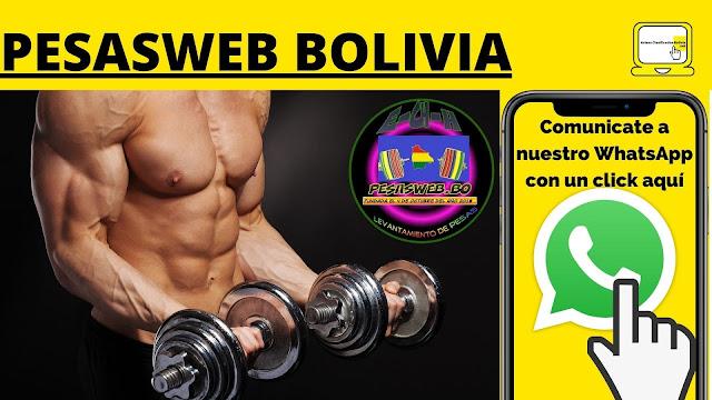 PESASWEB BOLIVIA