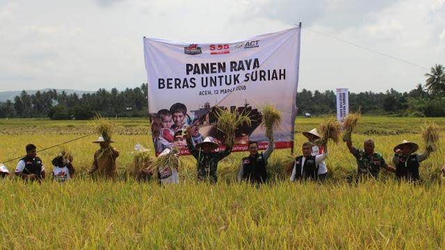 Inilah 4 Fakta Menakjubkan di Balik Bantuan 1000 Ton Beras Aceh untuk Suriah