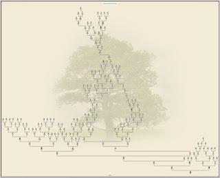 Árvore Genealógica Federico