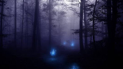 Image result for swamp gas lights