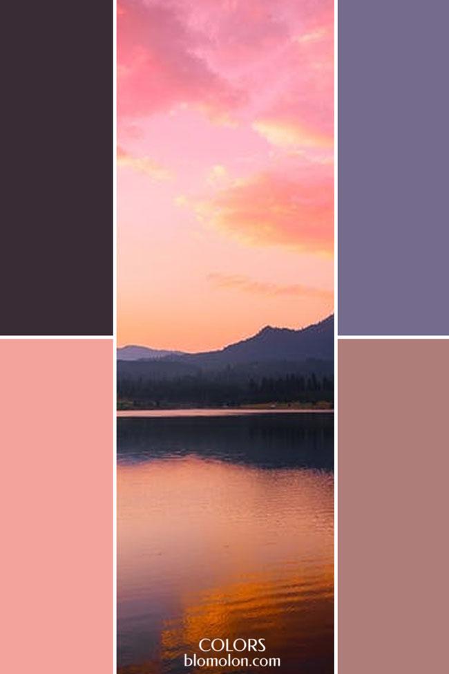 combinacion_variedad_de_color_5