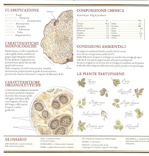 Information about Truffles – Carta della Qualità Brochure