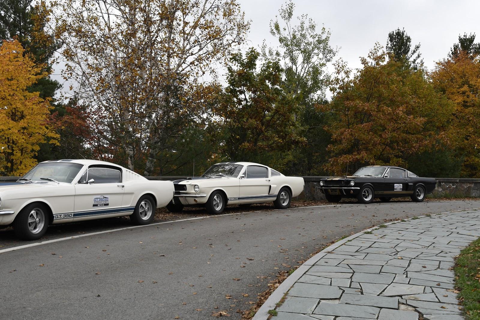 Virginia Classic Mustang Inc 1973 Fuel Filter