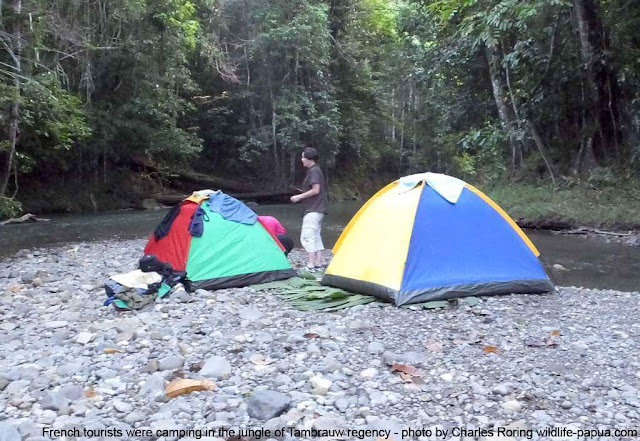 French tourists were in the jungle of West Papua