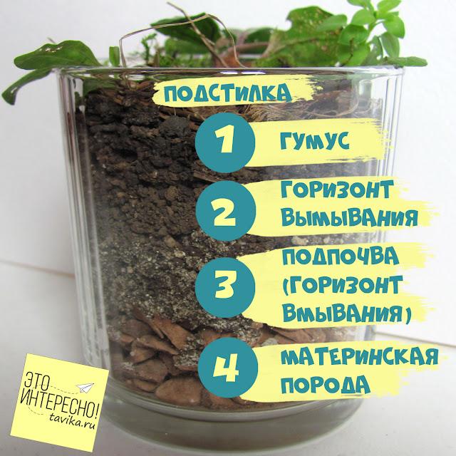 урок для детей о строении почвы