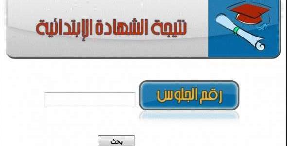 ظهرت الان ~ نتيجة الشهادة الابتدائية محافظة القاهره 2018 برقم الجلوس والاسم موقع اليوم السابع