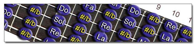 http://www.manualguitarraelectrica.com/p/notas-y-practica.html