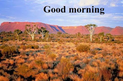 Sweet good morning images with nature download