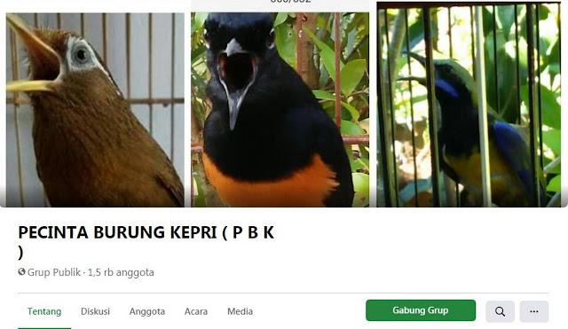 pecinta-burung-kepri-pbk