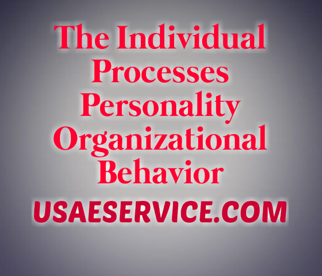 Individual Processes Personality Organizational Behavior