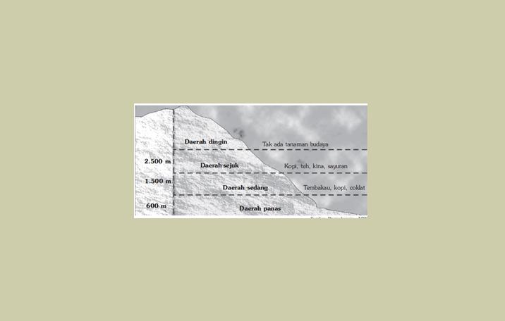 Klasifikasi Iklim Menurut Ketinggian Tempat dan Jenis Tumbuhan yang Cocok