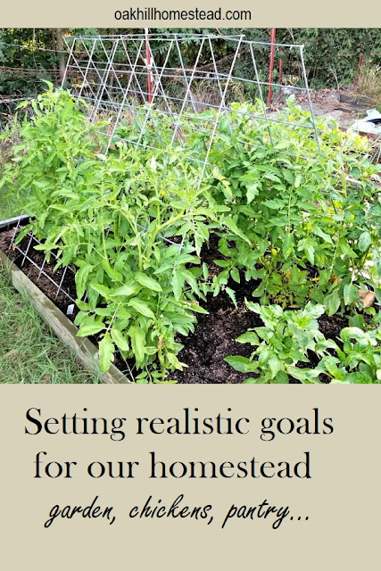 Setting homestead goals