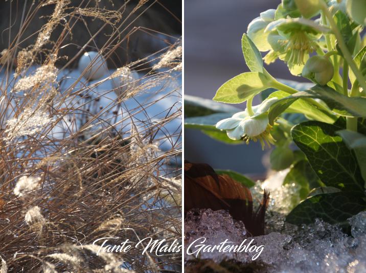 Der Garten Im Februar der garten und sein versprechen