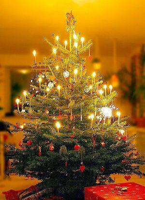 reason behind christmas tree