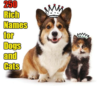 Aristocratic Names for Cats and Dogs