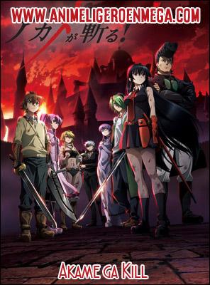 Akame ga Kill: Todos los Capítulos (24/24) [Mega - MediaFire - Google Drive] BD - HDL