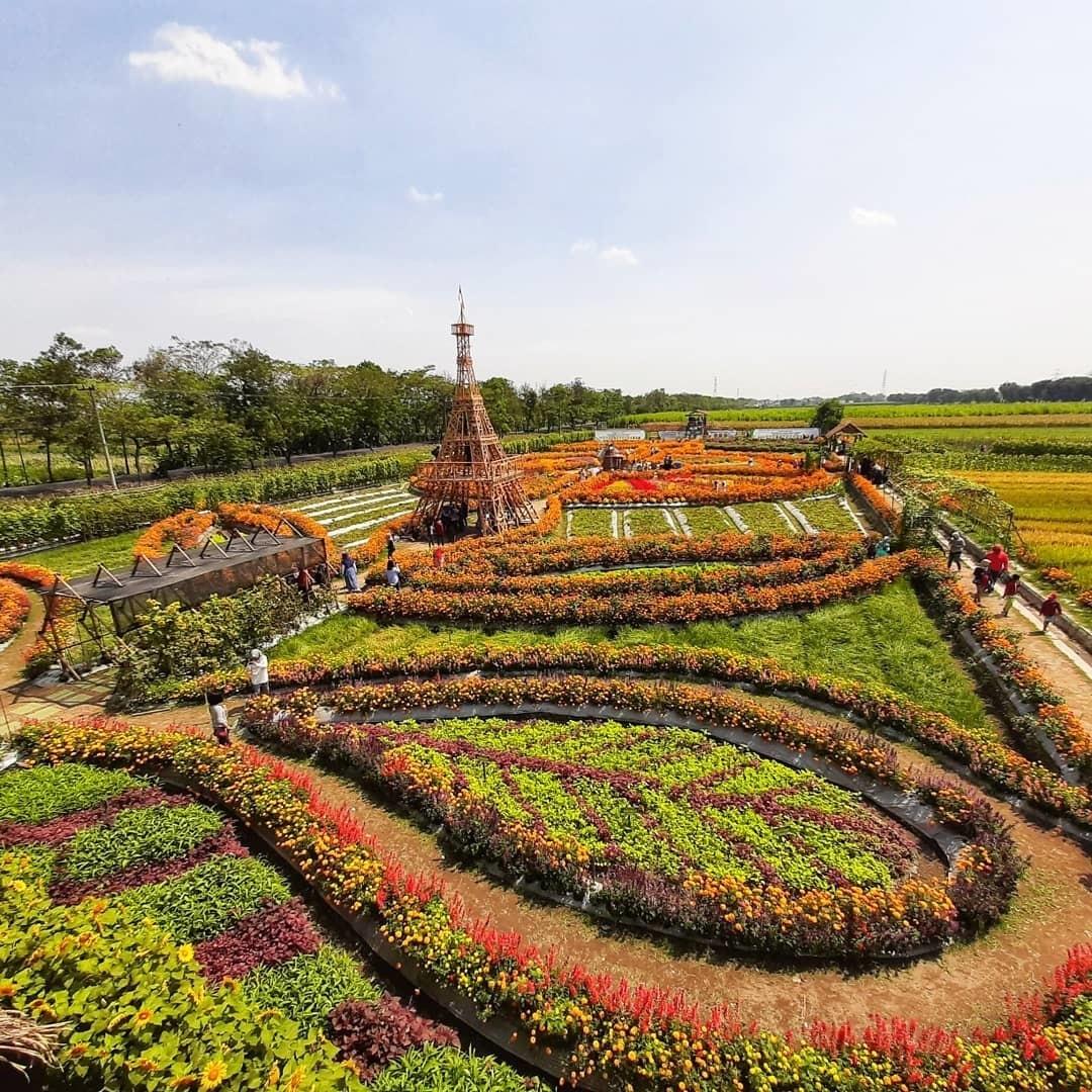 Lokasi Taman Dewi Cemara Kedungmalang Papar Kediri
