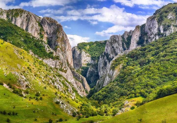 Turfa Gorge Cluj