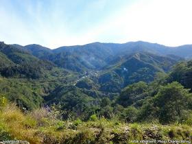 Birding sites in Arfak mountains