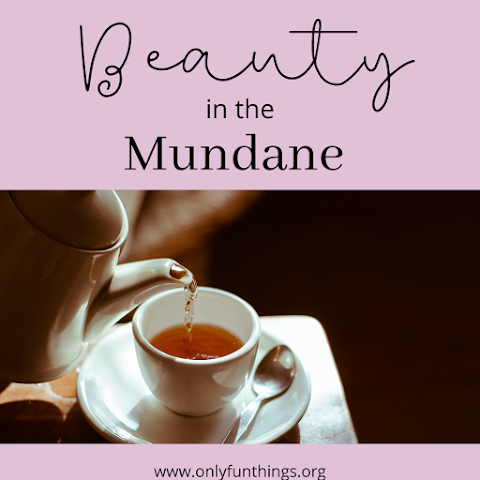 How to Find Beauty in the Mundane