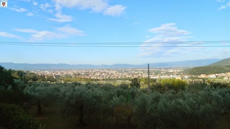 Visuale - Prato - Carteano